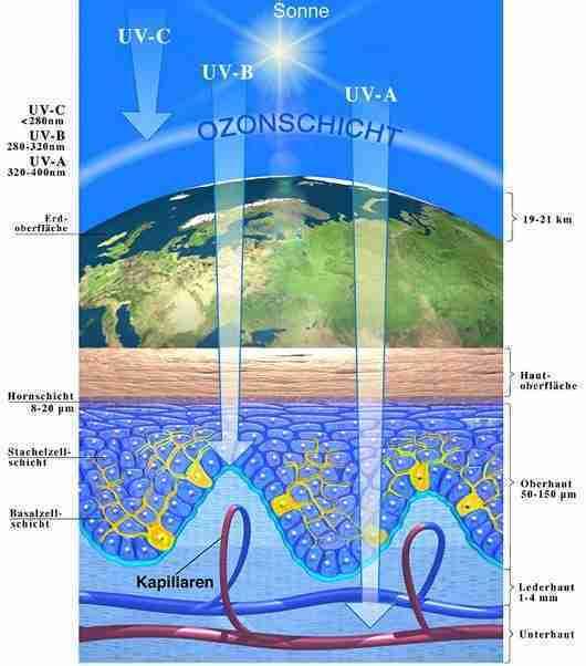 vorzeitige Hautalterung UVA vs UVB