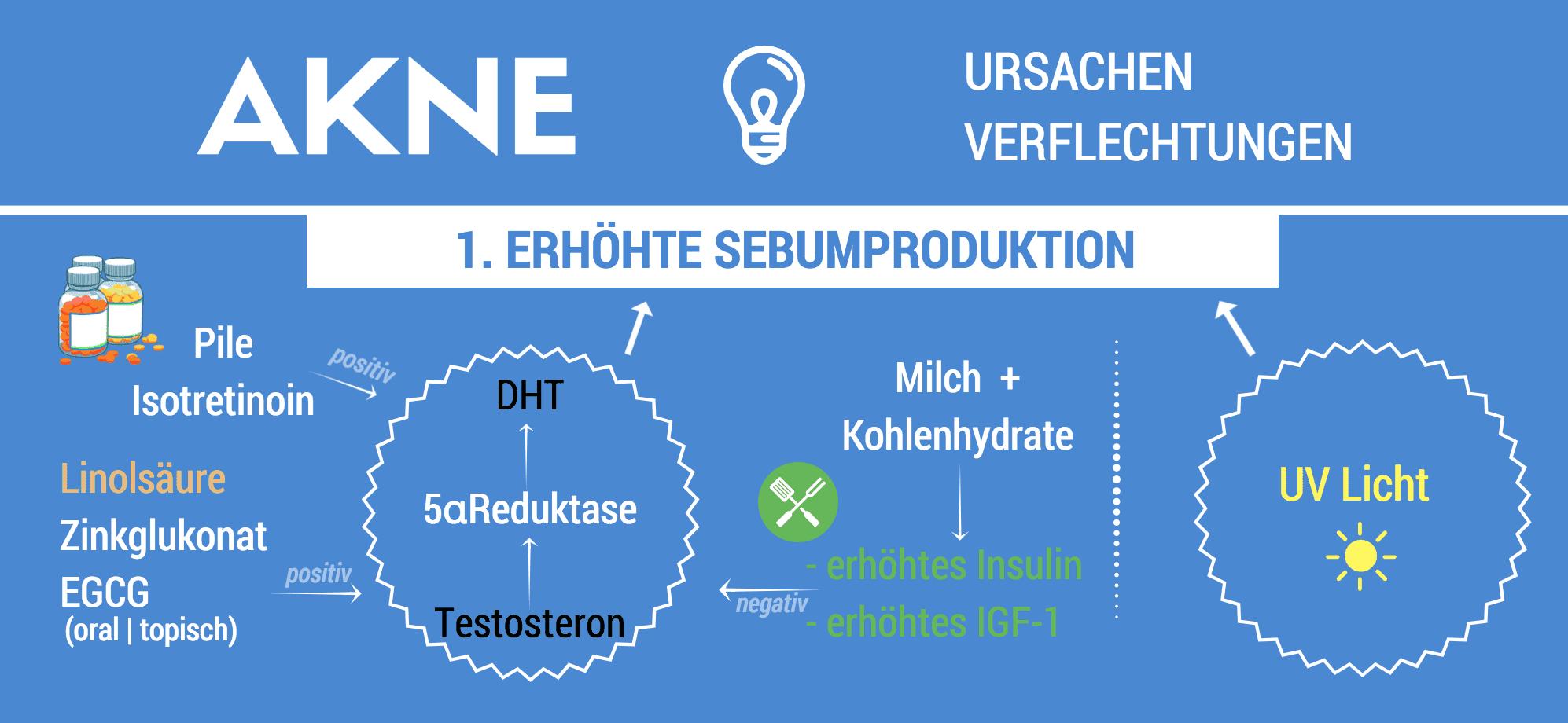 Akne_Ursachen_Infografik